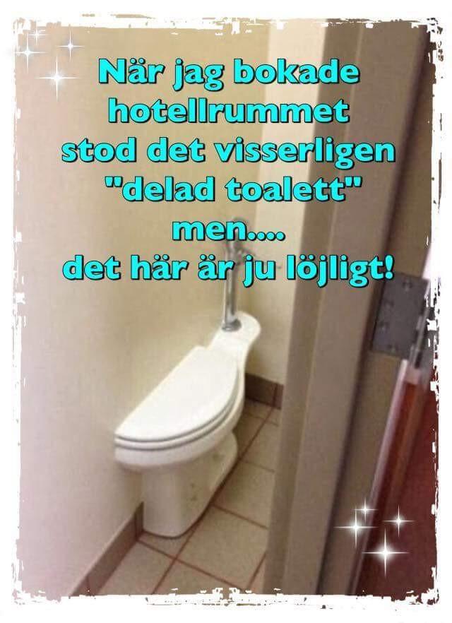 FB_IMG_1531483045251.jpg
